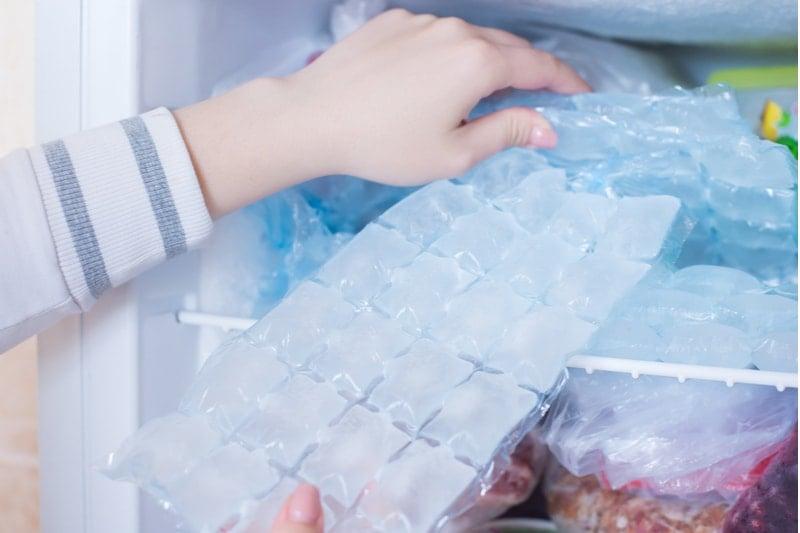 buz torbası